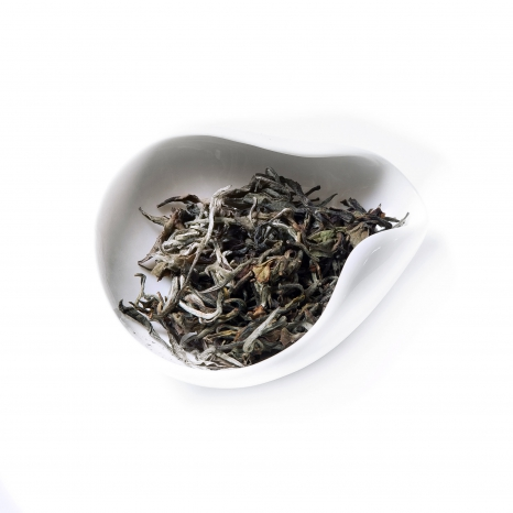 Darjeeling Rohini Exotic White first flush