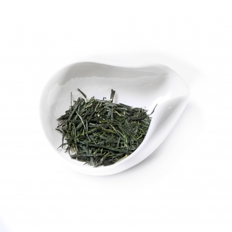 Sencha Inaguchi Exclusive