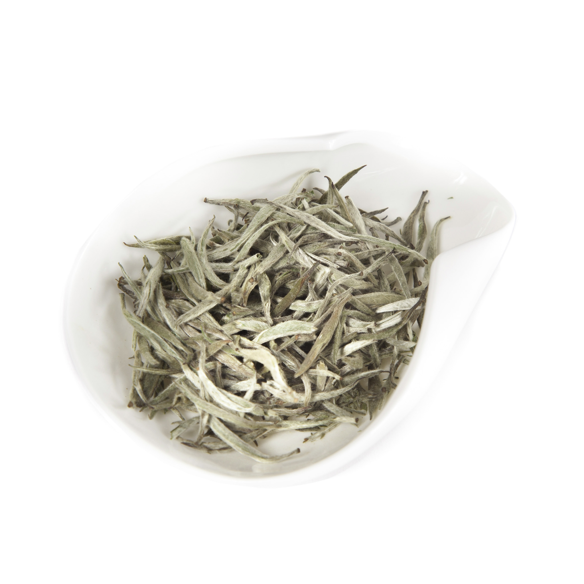 Nepal Silver Tips